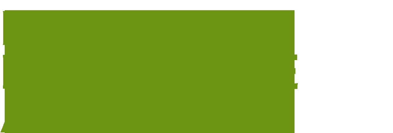 hast_du_natuerliche_authoritaet